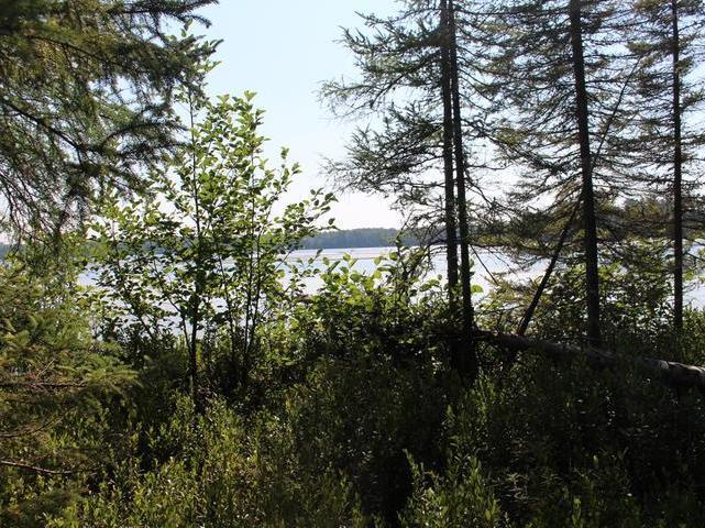 ON Birch Lake Rd #72 Acres, Watersmeet, MI 49969