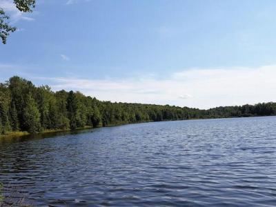 Photo of 01 Kentuck Lake Rd, Phelps, WI 54521
