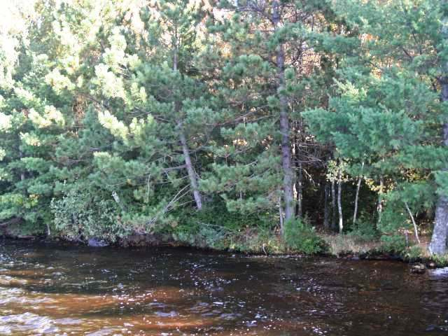 ON Hwy 32, Three Lakes, WI 54562