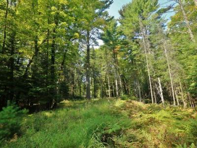 Photo of OFF Camp Two Rd, Plum Lake, WI 54521