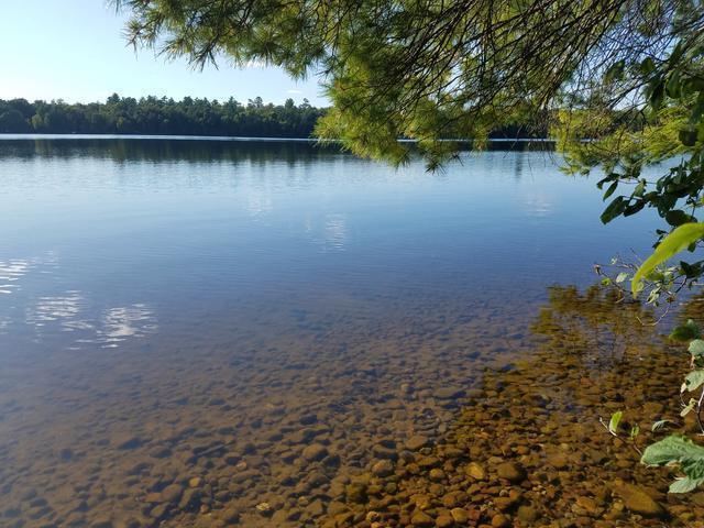 Lot 1 Clear Lake Rd E, Minocqua, WI 54548