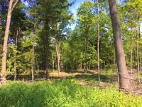 ON Hwy 17 #40ac, Phelps, WI 54554