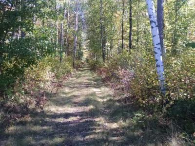 Photo of 2088 Adams Rd, Eagle River, WI 54521