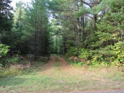 Photo of ON Meister Ln, Schoepke, WI 54463