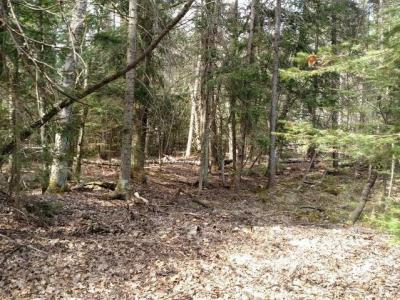 Photo of ON Chicago Ave, Conover, WI 54519