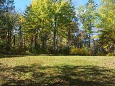 Photo of ON Wilsch Rd #Lot 2, Conover, WI 54519