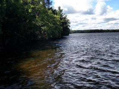Photo of ON Duck Lake Rd E #Parcel C, Watersmeet, MI 49969