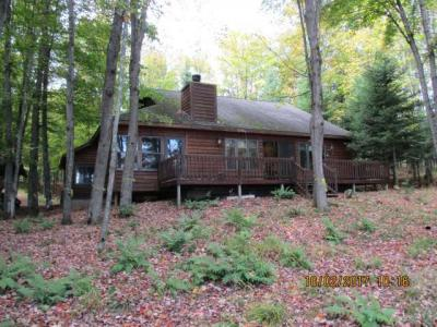 Photo of 3576 Palmquist Rd, Watersmeet, MI 49969