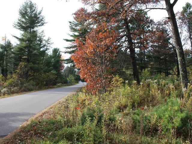 2068 Lighthouse Lodge Rd, Three Lakes, WI 54562