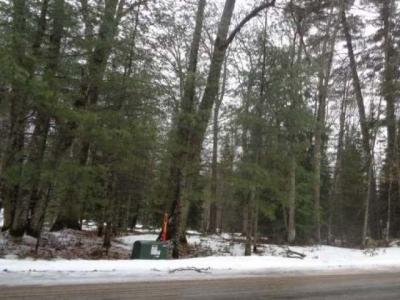 Photo of ON American Eagle Ct, Lake Tomahawk, WI 54539