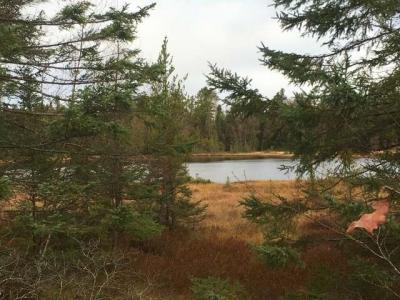 Photo of ON Tamarack Rd, Conover, WI 54519