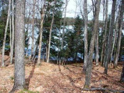 Photo of E23118 Sunset Cove Rd, Watersmeet, MI 49969