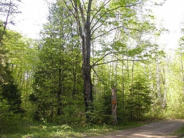 ON Winifred, Lac Du Flambeau, WI 54538