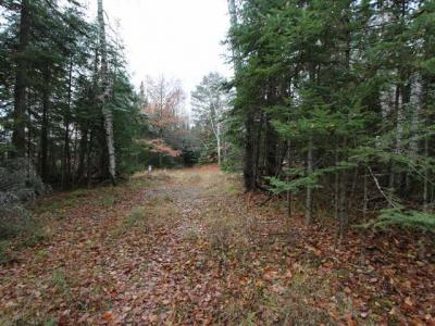 Photo of ON Sundstein Rd, Eagle River, WI 54521