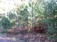 Lot 5 Henry Dr, St Germain, WI 54558