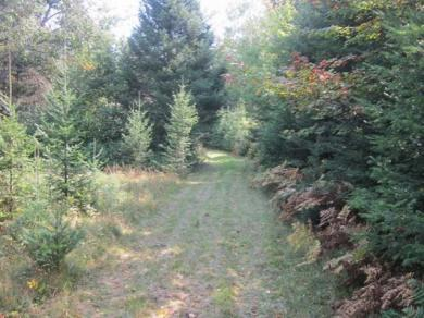 6110 Cth S, Conover, WI 54519