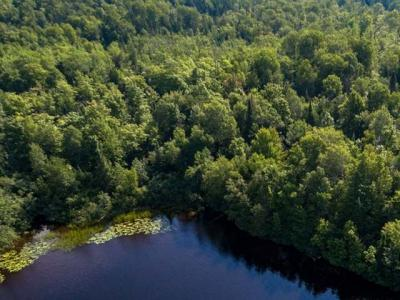 Photo of ON Bucks Rd #Lot 1, Winchester, WI 54557