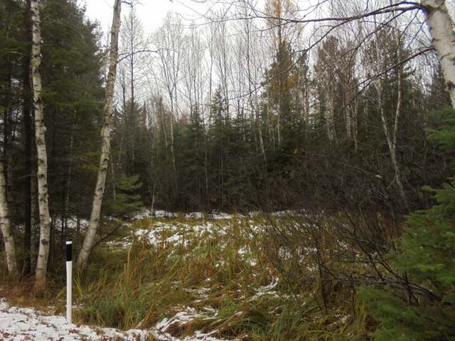 Lot #1 Military Rd #On, Three Lakes, WI 54562