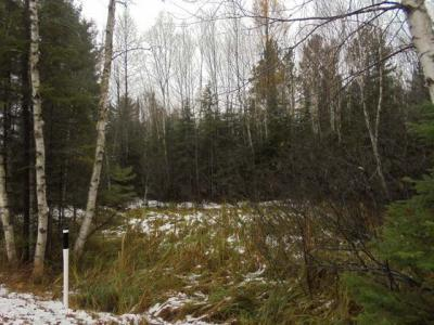 Photo of Lot #1 Military Rd #On, Three Lakes, WI 54562