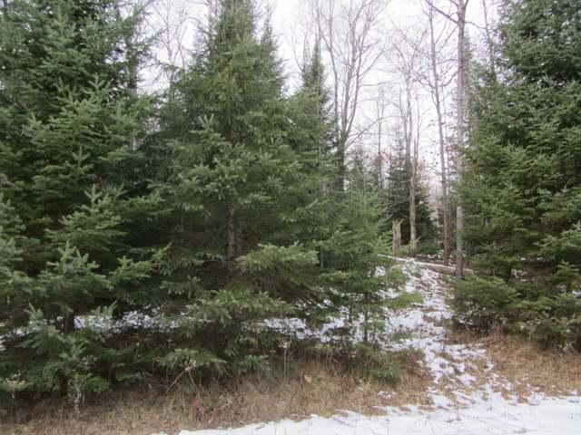 ON Woodland Dr ##44, Plum Lake, WI 54568