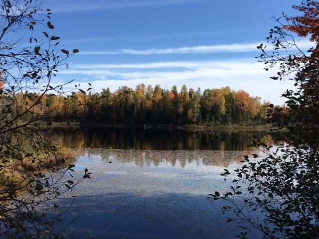 ON Lynx Lake Rd, Presque Isle, WI 54557