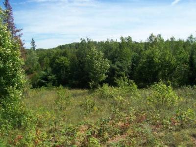Photo of 174 Forest Rd 3940, Stambaugh, MI 49935