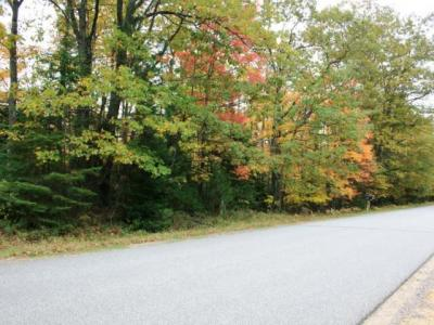 Photo of ON Monheim Rd, Conover, WI 54554