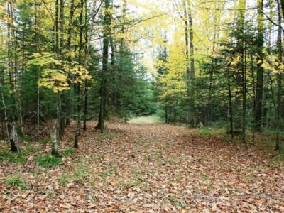 Photo of ON Starwood Dr, Conover, WI 54554
