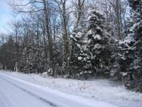 Off St Louis Rd, Phelps, WI 54554