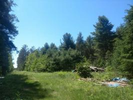 ON Willow Dr, Eagle River, WI 54521
