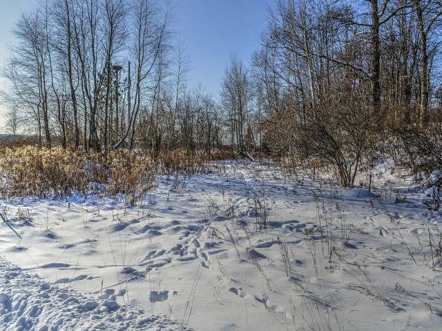 ON Cth E #3.06, Phelps, WI 54554