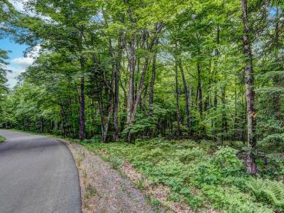 Photo of Lot 3 Sugar Maple Rd, Phelps, WI 54554