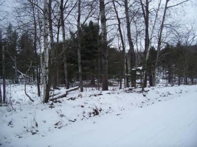 Photo of ON Laura Lake Rd E #Lot 6, Plum Lake, WI 54560