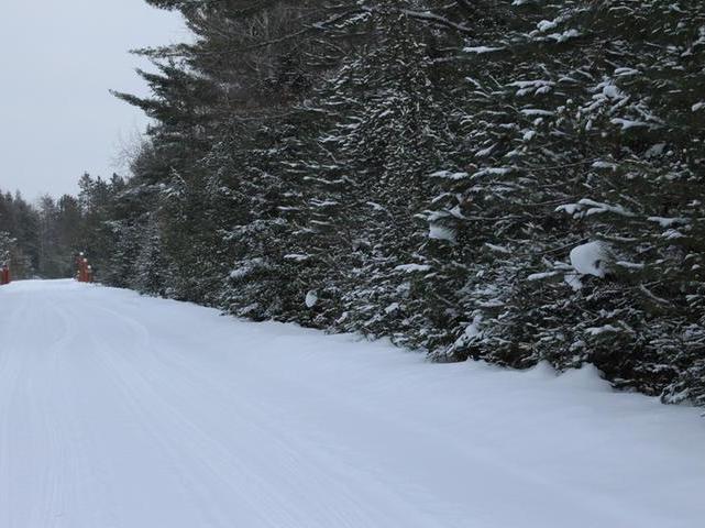 ON Whitetail Run Ln #Lots, Land O Lakes, WI 54540