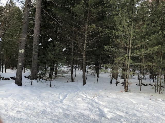 ON Henry Dr #Lot 1, St Germain, WI 54558