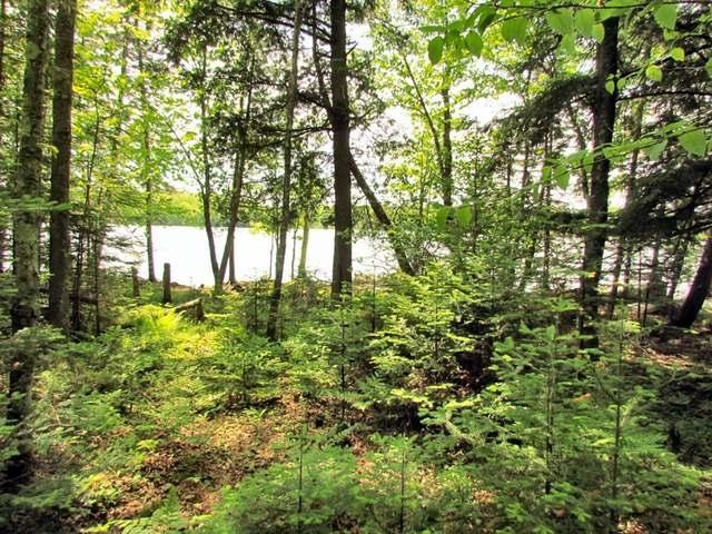 LAKE LOT Camp 6 Loop Rd #Camp 6 Lk, Armstrong Creek, WI 54103