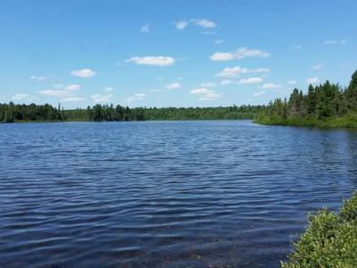 Photo of LOTS 1-5 Cth B, Land O Lakes, WI 54540