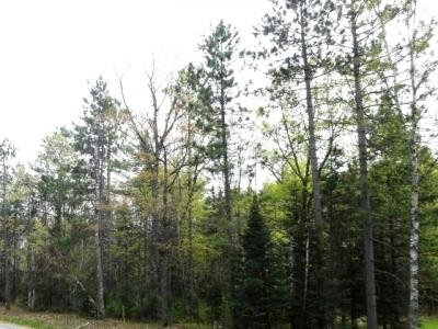 Photo of Lot 11 Lost Lake Dr W, St Germain, WI 54558