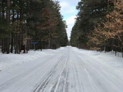 Photo of ON Twin Pines Rd, Manitowish Waters, WI 54545