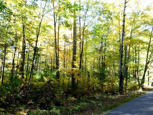 Lot 34 Point O Pines Rd, Manitowish Waters, WI 54545