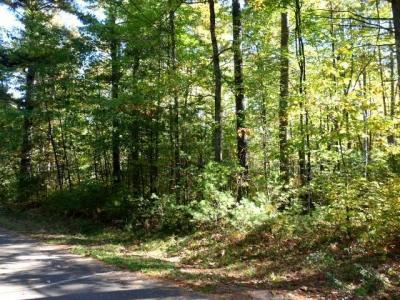 Photo of Lot 33 Point O Pines Rd, Manitowish Waters, WI 54545