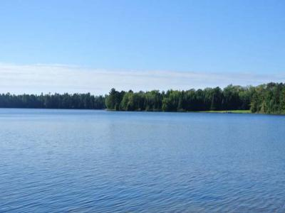 Photo of ON Allyn Rd, Three Lakes, WI 54562