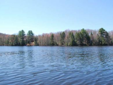 2611 Lost Lake Ln, Crandon, WI 54520