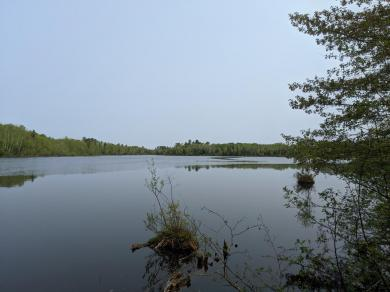 ON Pixley Wilderness West Rd #Lot #5, Lake, WI 54552