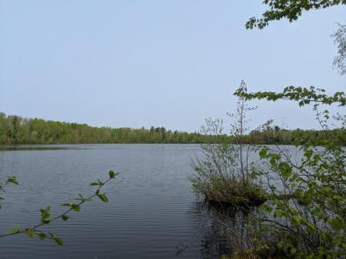 ON Pixley Wilderness West Rd #Lot #7, Lake, WI 54552