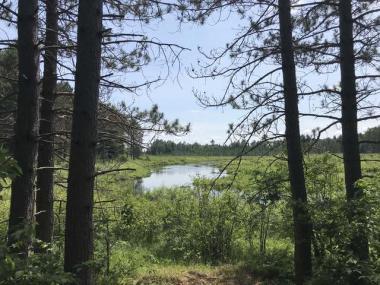 160 ac. Scotchman Lake Rd, Minocqua, WI 54548