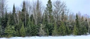 ON Hwy 45 #Lot 2, Conover, WI 54519