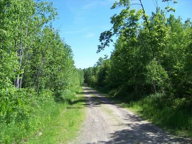 40 acres North Ln, Argonne, WI 54511