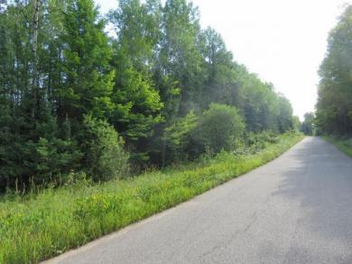 ON Gagen Rd #19 Acres, Rhinelander, WI 54501