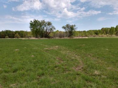40 Acres Vascheau Rd, Gleason, WI 54435